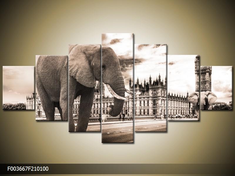 Obraz na stěnu slon ve městě