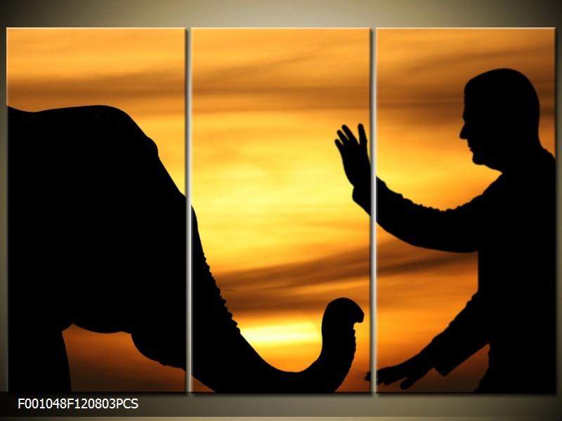 Obraz do bytu člověk a slon