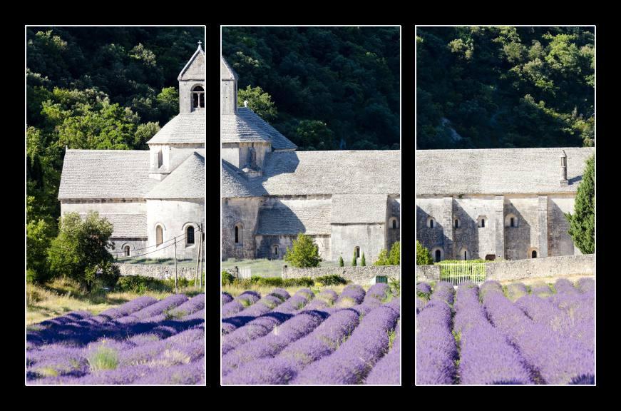 Obraz na zeď Provence