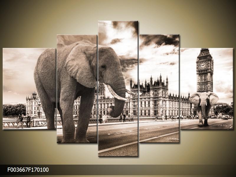 Obraz na plátně slon v Londýně