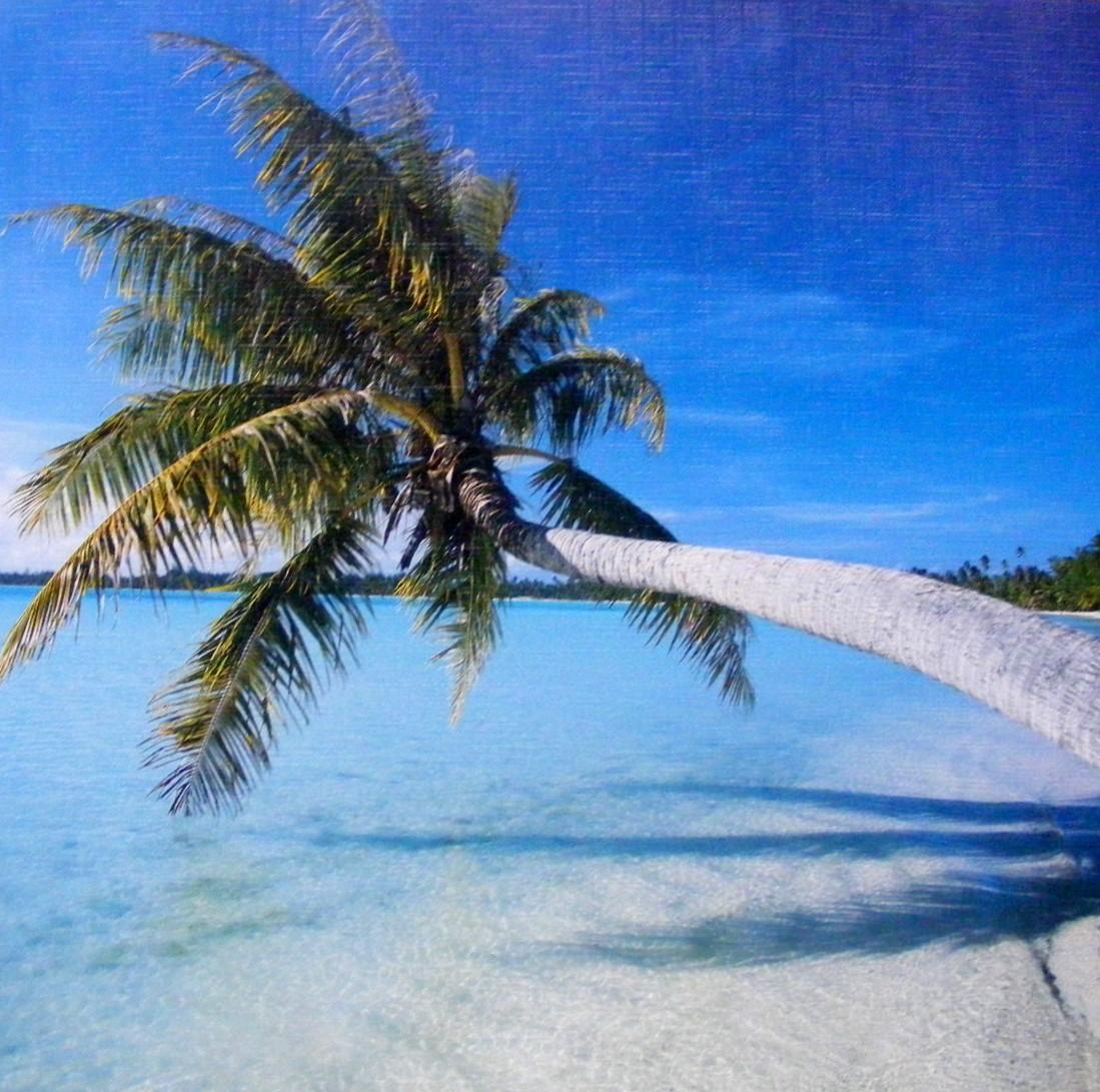 Obraz palmy u moře