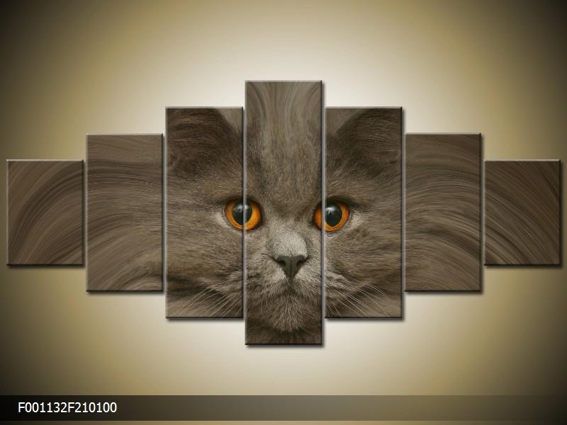 Obraz na stěnu kočka