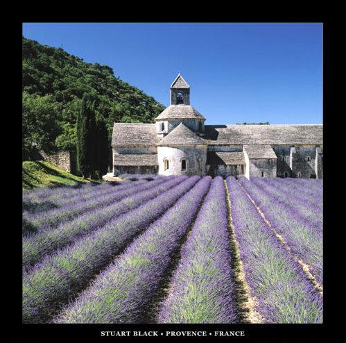 Obraz Provence ve Francii