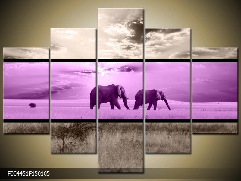 Obraz na stěnu sloni