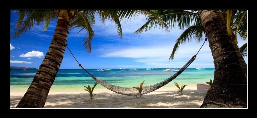 Obraz na plátně pláž s palmami