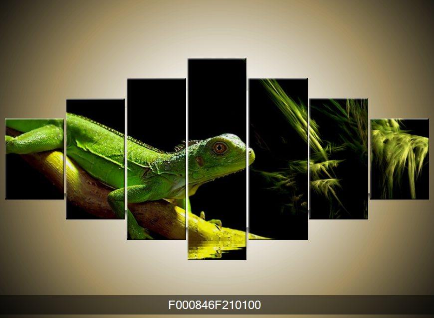 Obraz ještěrky