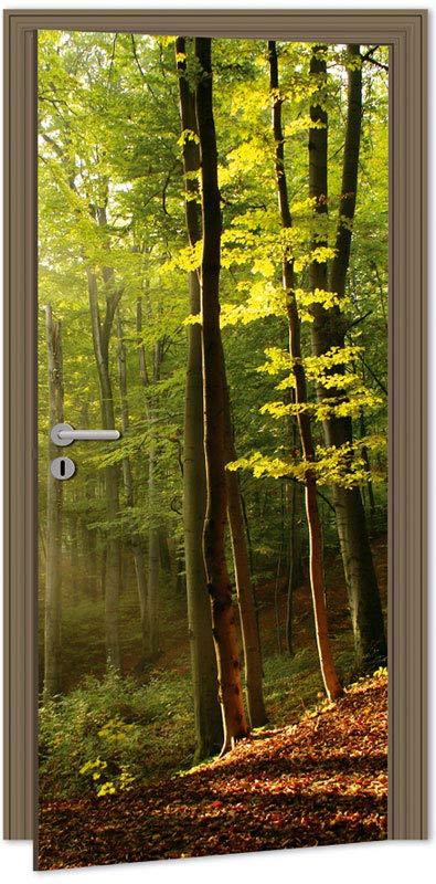 Samolepící fototapeta na dveře - les