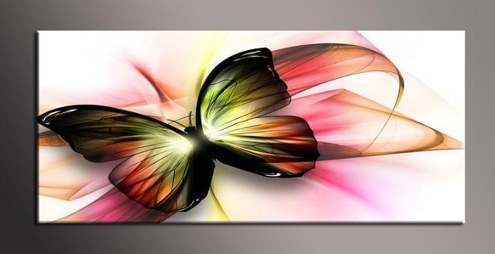 Obraz na zeď motýl