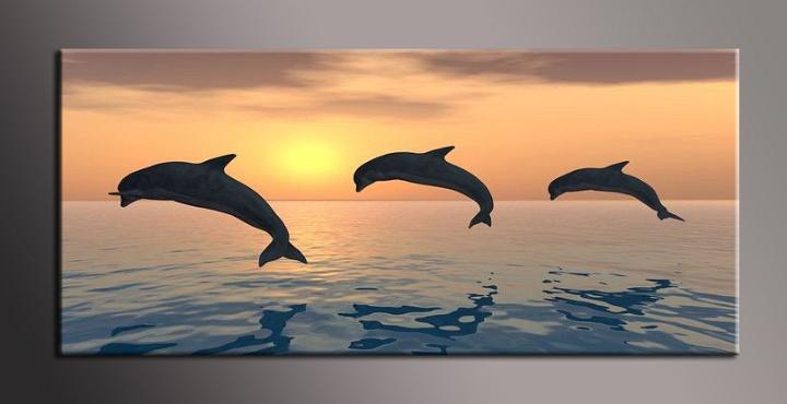 Obraz na zeď delfíni