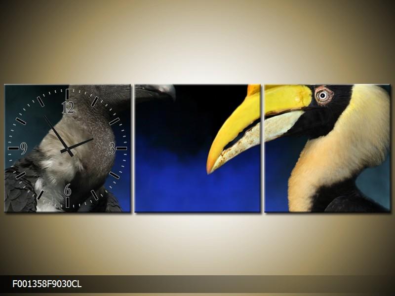 Obraz s hodinami tukan