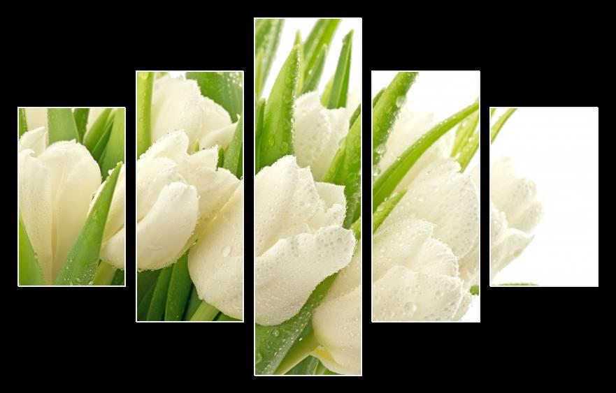 Obraz na stěnu bílé tulipány