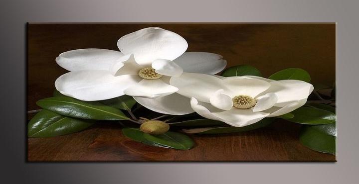 Obraz do bytu bílé květy
