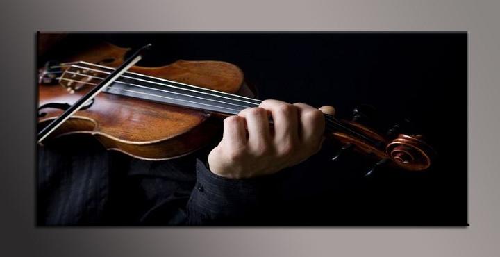 Obraz na plátně houslista