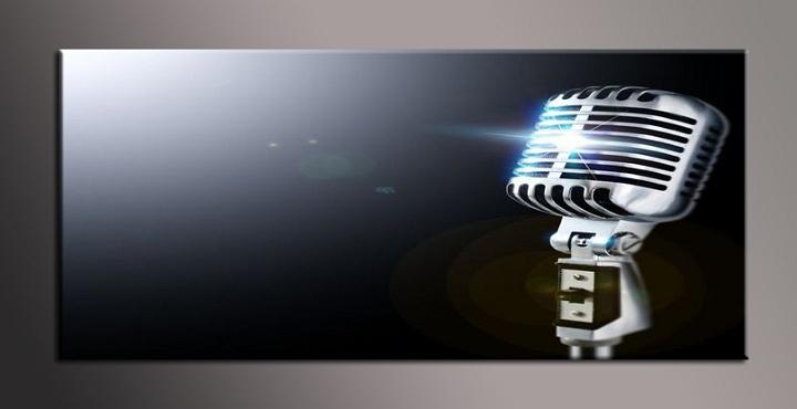 Obraz na plátně mikrofon