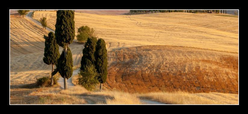 Obraz na zeď Toskánsko, Itálie