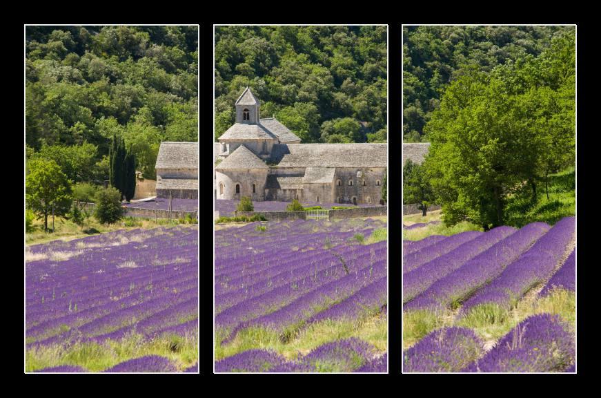 Obraz na zeď levandule, Provence
