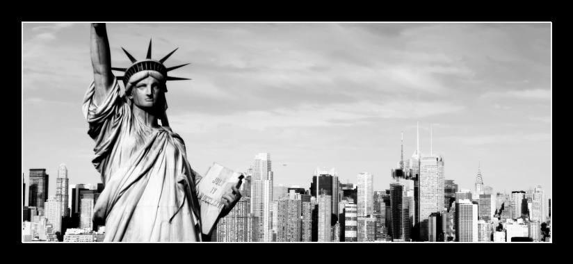 Obraz do bytu socha svobody