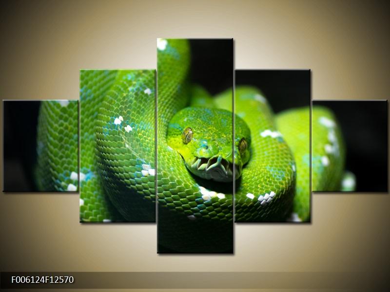 Obraz na stěnu had