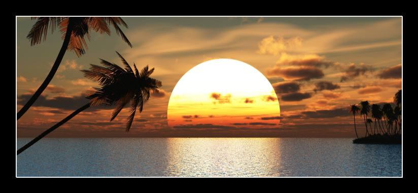 Obraz do bytu západ slunce, palmy