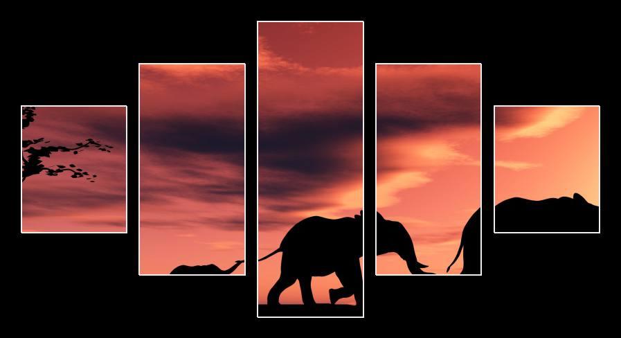 Obraz slonů