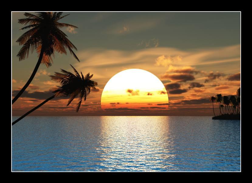 Obraz na skle palma