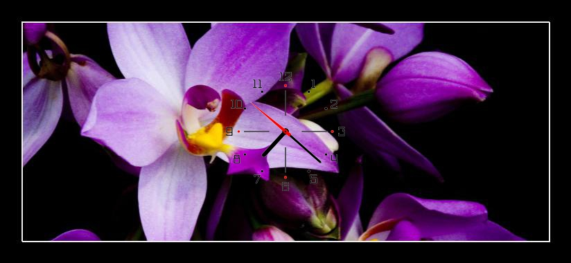 Obraz s hodinami - fialová květina