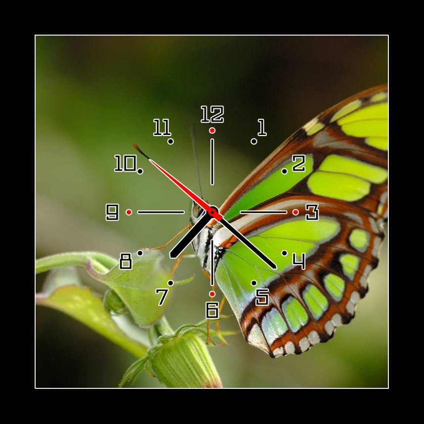 Obraz s hodinami zelený motýl