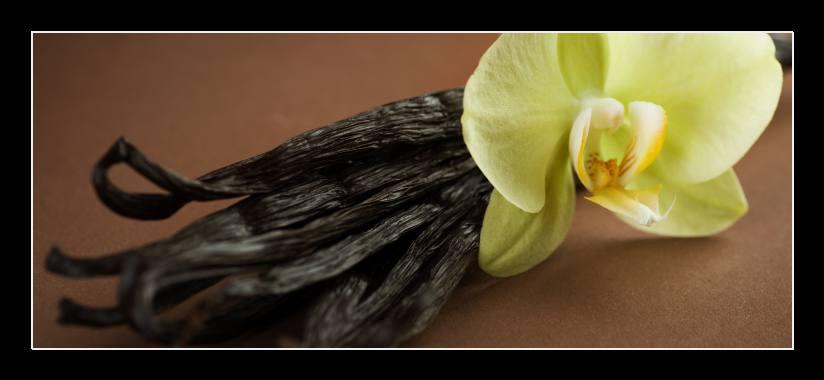 Obraz na skle vanilka a orchidej