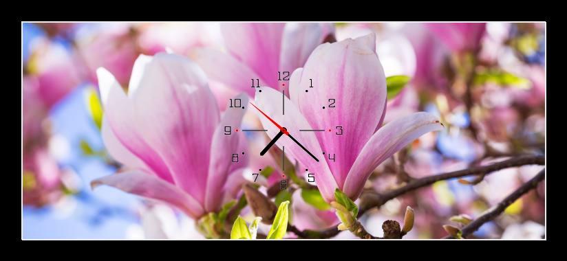 Obraz s hodinami - světle růžové květy