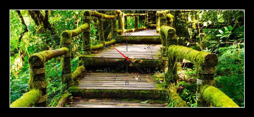 Obraz s hodinami - dřevěné schody porostlé mechem