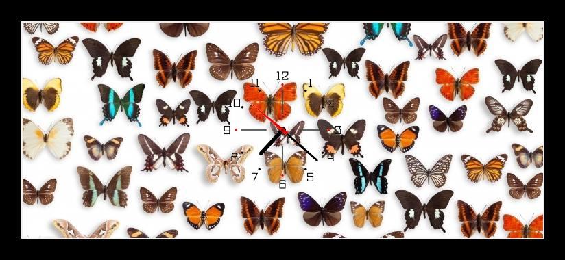 Obraz s hodinami - barevní motýli