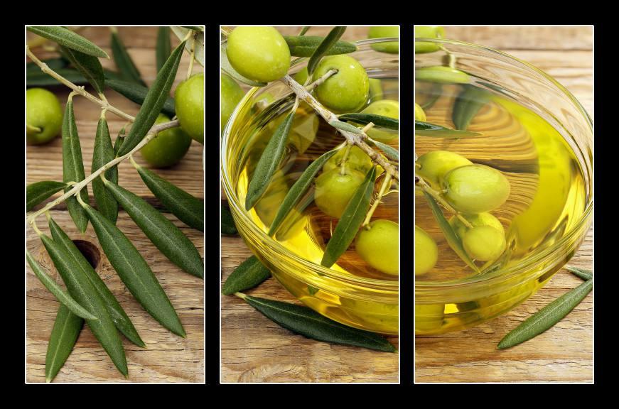 Obraz na zeď olivy