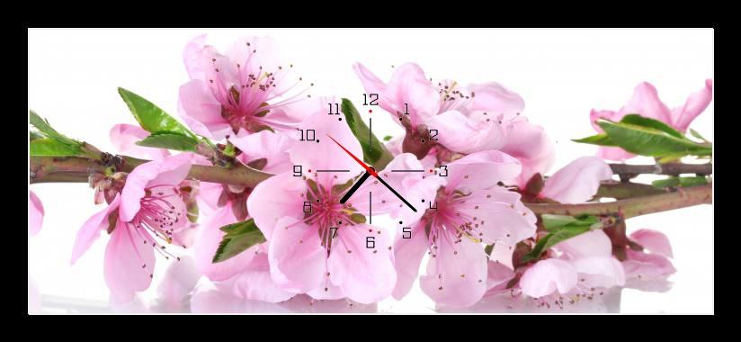 Obraz s hodinami - růžové květy