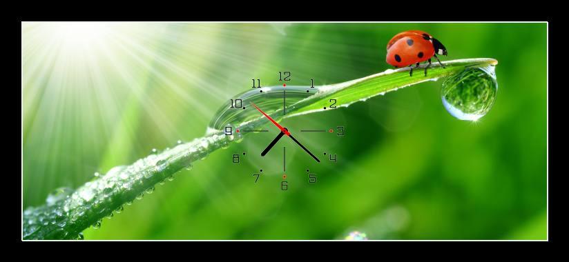 Obraz s hodinami - beruška