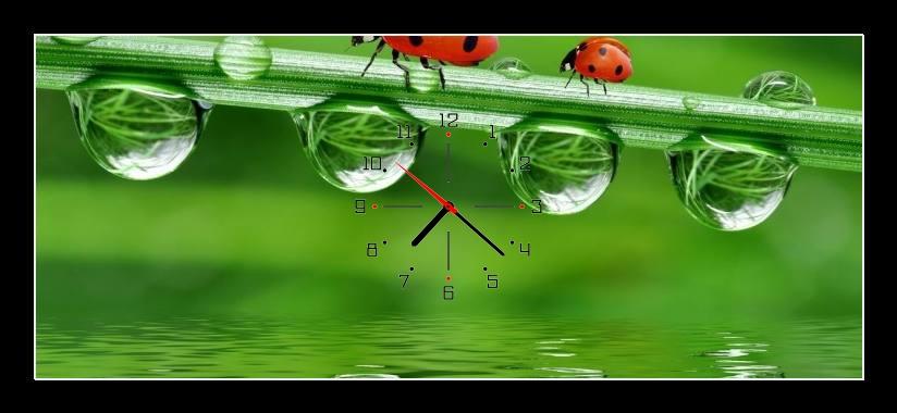 Obraz s hodinami - berušky