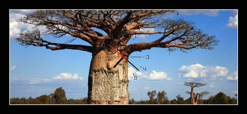 Obraz s hodinami - strom se silným kmenem