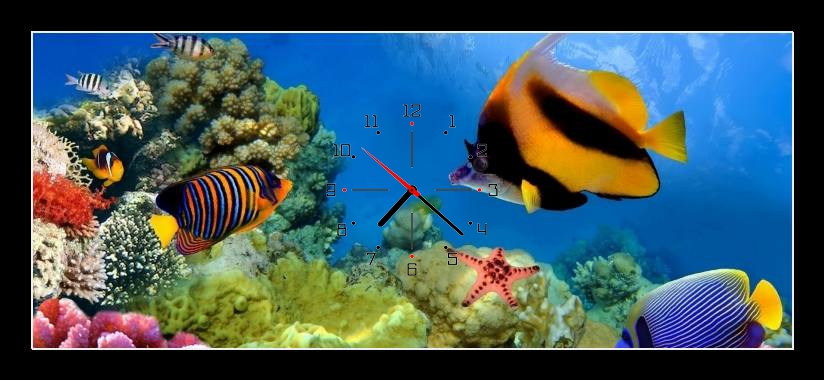 Obraz s hodinami - ryby v moři