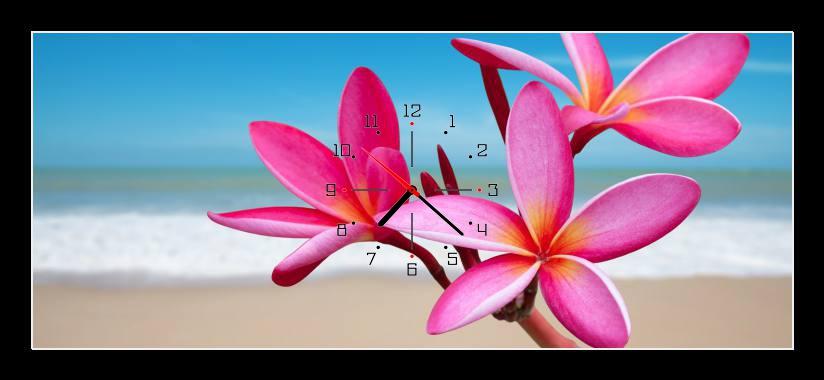 Obraz s hodinami - růžové květy u moře