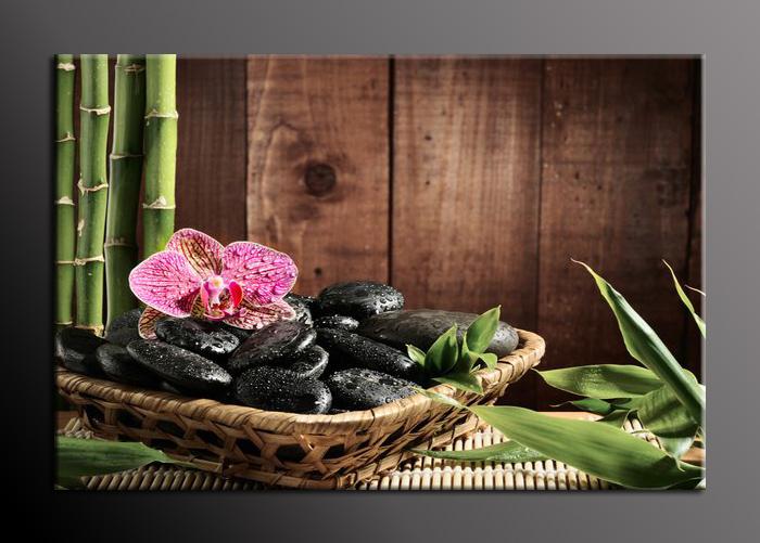 Obraz na stěnu kameny a orchidej