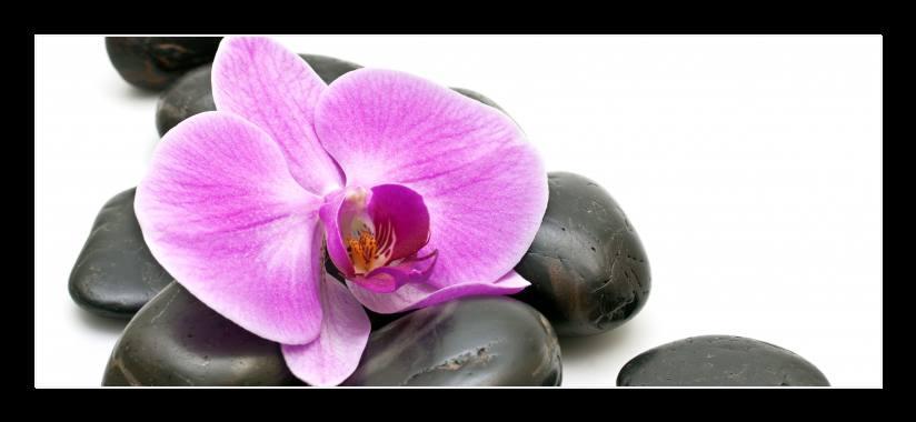 Obraz do bytu kameny a orchidej