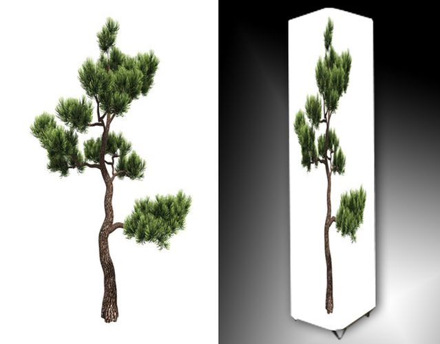Lampa - bonsai