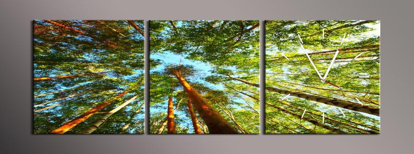 Obraz s hodinami koruny stromů