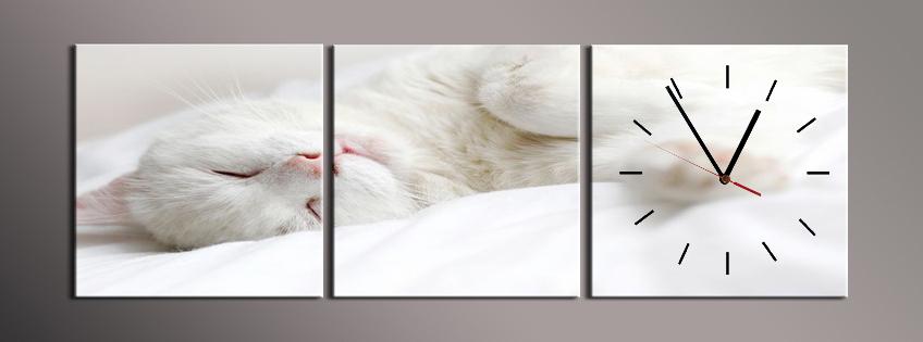 Obraz s hodinami bílá kočka