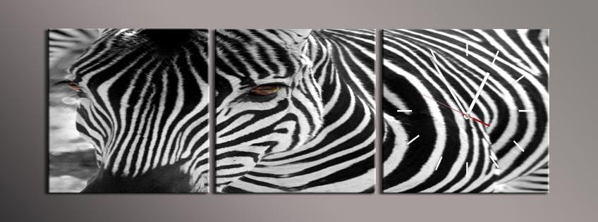 Obraz s hodinami zebra