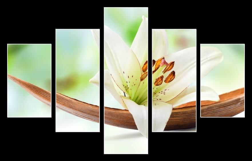 Obraz bílé lilie