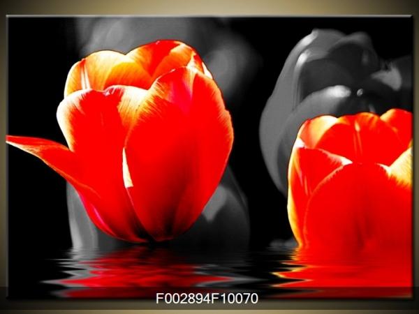 Obraz červených tulipánů