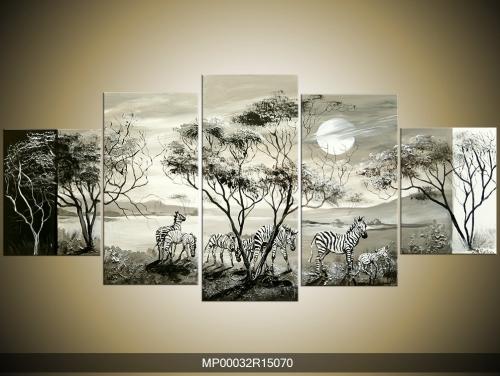 Černobílý obraz zebry