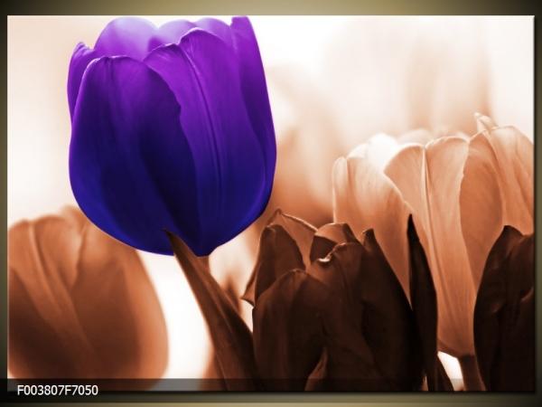 Moderní obraz na zeď fialový tulipán