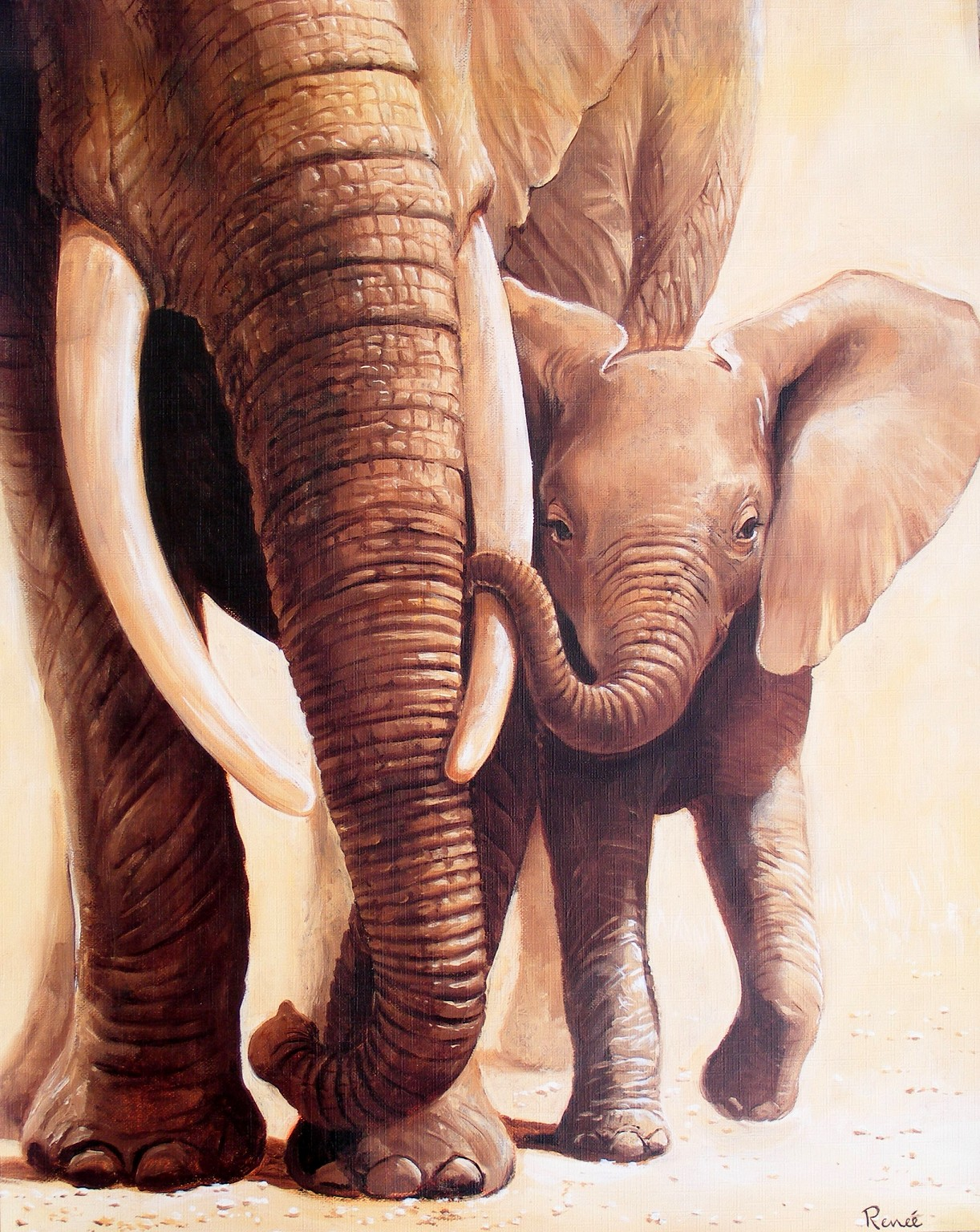 Obraz sloní péče