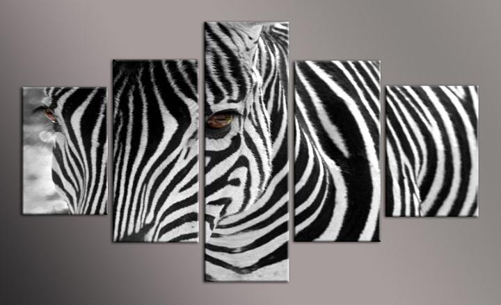 Obraz na stěnu zebra
